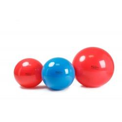 Piłka Rehabilitacyjna Gymnic Physio